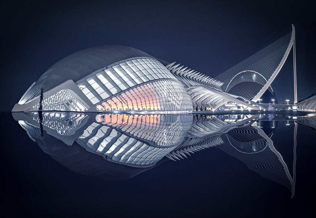 architectural photography water reflection fish by pedro luis